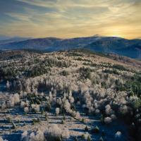 Paysage-hiver-2020-12--Stadler-RGE-3.png
