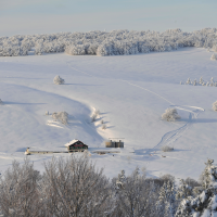 markstein_neige_c_stadler-region_alsace_.png