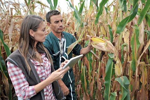 jeunes_agriculteurs_champ_c_goodluz_fotolia.jpg